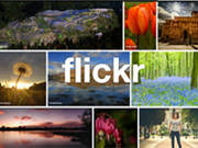 FLICKR - FOTOGRAFIAS DO PORTAL MESSEJANA